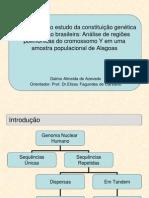 Y Chromosome Ancestry in Alagoas Population