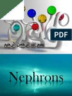 Nephronstuble Wafa