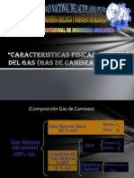 Uso Gas Camisea Xpo