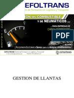 Diapositivas Gestion Del Combustible y de Neumaticos