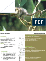 Ficha Fauna Mapu Lahual