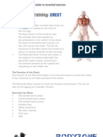 BodyZone Training Guide Muscles