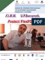 FlexFORM_Lucrare finala_2012