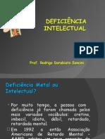 deficiencia intelectual 1 normatizaçao novo