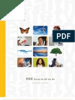 2011 HSE Report