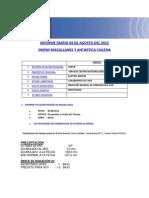 Informe Diario Onemi Magallanes 04.08