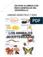 tgdunidadinvertebrados-100428163817-phpapp01