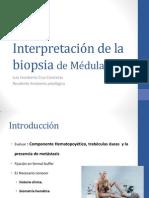 Interpretacic3b3n de La Biopsia de Mc3a9dula