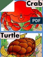 Sea Animal Flash Cards