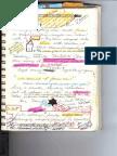 Journal 1 08.04.08 p5-0001
