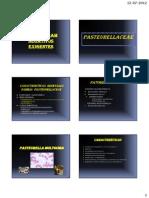Act Criterios de Infeccion 2010 (1)