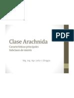 39178673.Powerpoint - ACAROS - 2011