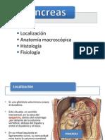 Anatomia Pancreas