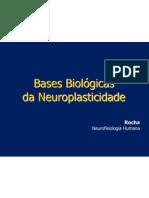 Neuro Plastic i Dade