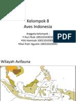Aves Indonesia Dpmisarisq