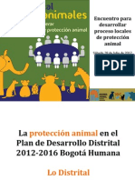 Accion Local Animales