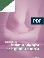 Compredio de Anatomia Patologica de La Glandula Mamaria