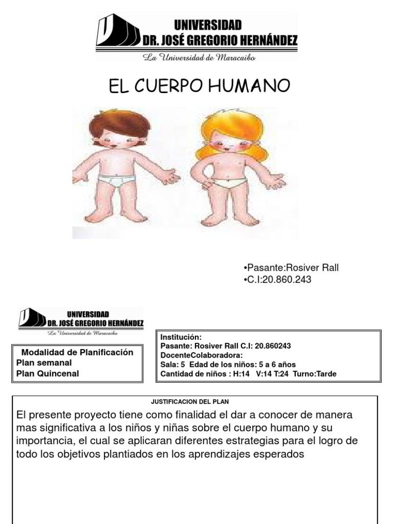 Encantador Partes De Pata Del Cuerpo Humano Composición - Anatomía ...