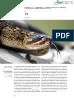 Comunicación química de serpientes