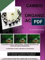 cambioorganizacional2010-110526163426-phpapp01