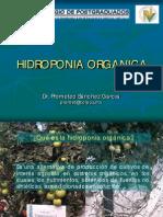 hidroponia_organica