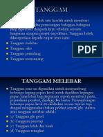 TANGGAM (1)