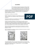 Evolución histórica de los cordófonos segunda parte.