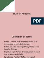 Human Reflex