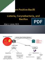 GramPositiveBacilli2012 (1)