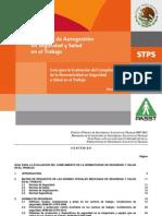 Guia de Autogestión STPS