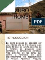 Diapositivas de Trombe