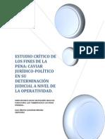 ESTUDIO CRÍTICO DE LOS FINES DE LA PENA