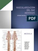 Vascularizacion Del Snc