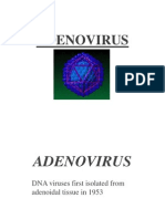 1590 Adenovirus