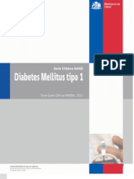 Diabetes Tipo 1 2011
