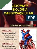 Fisiologia Cardiovascular (1era Parte)