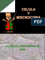 Celula y Otros