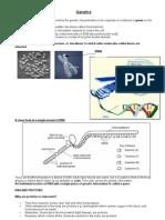 Genetics 2008 Pupil Notes