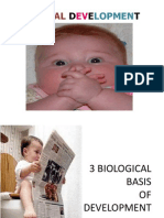 Che Prenatal Development