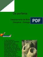 poriferos