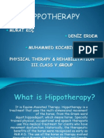 HİPPOTHERAPY