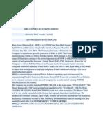 Birla Power Industry Analysis