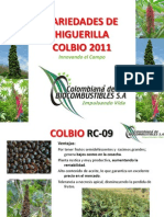 5 Variedades de Higuerilla 2011