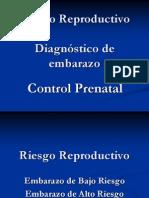 3 Dx Embarazo Riesgoreproductivo Contrrolprenatal 090528180020 Phpapp01