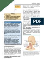 linfadenopatia