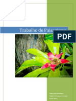 Trabalho Paisagismo Lidiane Monteiro