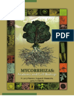 Peterson, r l & Massicotte, h b - Mycorrhizas - Anatomy and Cell Biology