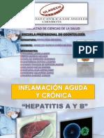 Hepatitis Compelto
