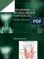 fosfocalcic