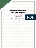 Të pavërtetat dhe faktet rreth Pjetër Bogdanit